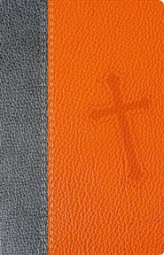 Santa Biblia Promesas-NTV, Imitation Leather, Orange/Grey