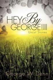 Hey by George!iii  -     By: George W. Denn