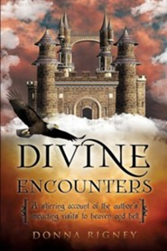 Divine Encounters  -     By: Donna Rigney