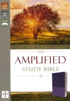 Amplified Study Bible--soft leather-look, purple  -