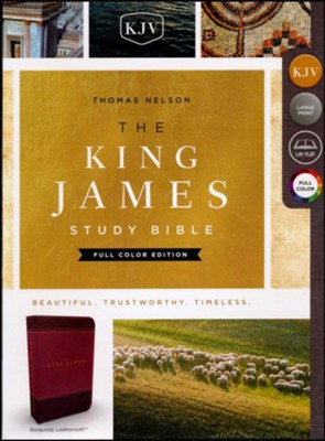 KJV Study Bible Full-Color Edition, Imitation Leather, Burgundy  -