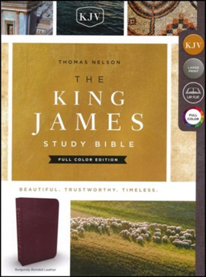 KJV Study Bible Full-Color Edition, Bonded Leather, Burgundy  -