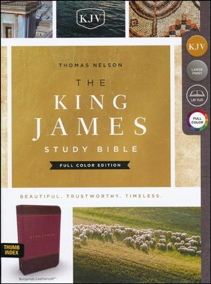 KJV Study Bible Full-Color Edition, Imitation Leather, Burgundy, Indexed  -