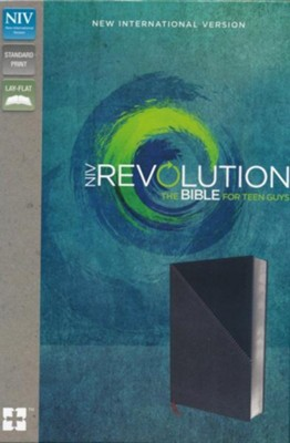 NIV, Revolution Bible: The Bible for Teen Guys, Imitation Leather, Gray and Navy  -     Edited By: Christopher D. Walton