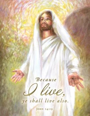 Risen Christ (John 14:19, KJV) Tabloid Bulletins, 100 - Christianbook.com