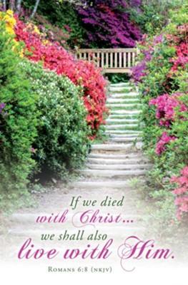 We Shall Also Live With Him (Romans 6:8, NKJV) Bulletins, 100