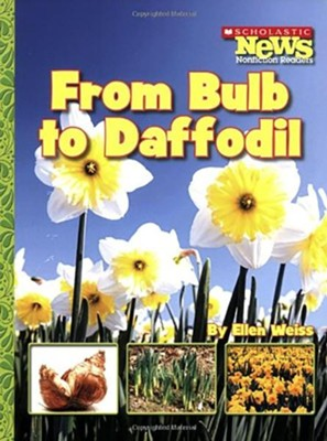 From Bulb to Daffodil  -     By: Ellen Weiss