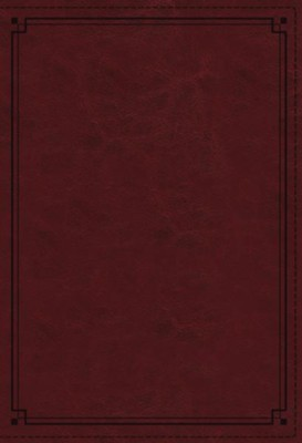 NKJV Comfort Print Study Bible, Imitation Leather, crimson  -
