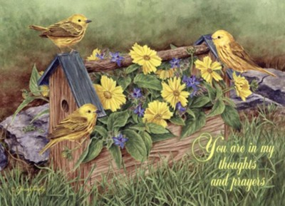 Thinking of You, Bowers and Birds Cards, Box of 12  -     By: Terry Isaac