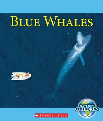 Blue Whales  -     By: Ruth Bjorklund