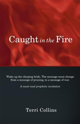 Caught in the Fire - eBook  -     By: Terri Collins