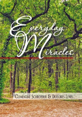 Everyday Miracles - eBook  -     By: Clementine Schroeder