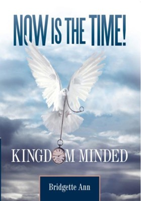 Now Is The Time!: Kingdom Minded - eBook  -     By: Bridgette Ann