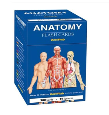Anatomy Flash Cards (300 Cards)  -     By: Vincent Perez