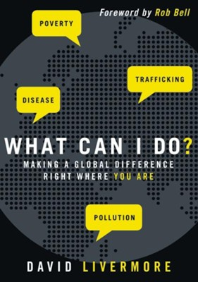 What Can I Do?: Making a Global Difference Right Where You Are  -     By: David Livermore