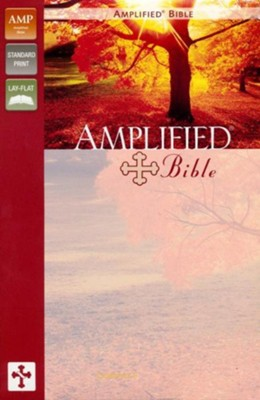 Amplified Bible, Italian Duo-Tone, Dark Orchid/Deep Plum  -