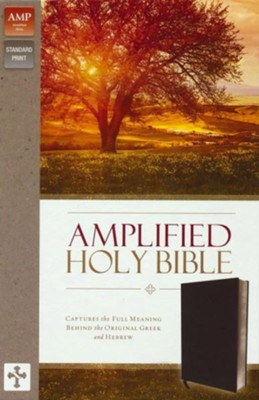 Amplified Thinline Holy Bible--bonded leather, black (indexed)  -