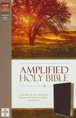 Amplified Thinline Holy Bible--bonded leather, burgundy  -
