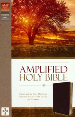 Amplified Holy Bible--bonded leather, burgundy (indexed)  -