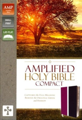 Amplified Compact Holy Bible--soft leather-look, dark orchid/deep plum  -