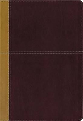 KJV and Amplified Parallel Bible, Large Print, Leathersoft, Camel/rich red   -