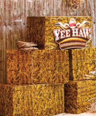 Yee-Haw: Weathered Wood Plastic Backdrop  -
