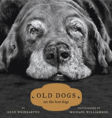 Old Dogs Are The Best  -     By: Gene Weingarten, Michael Williamson