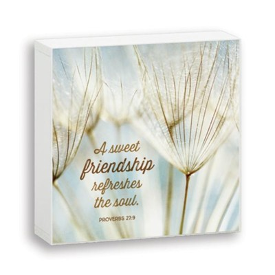 A Sweet Friendship, Box Plaque  -