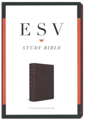 ESV Study Bible, Burgundy Genuine Leather   -