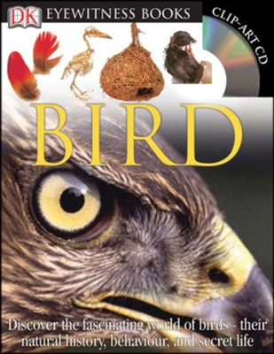 Bird: Everything You Need to be An Expert  -     By: David Burnie