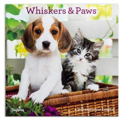 2019 Whiskers & Paws, Wall Calendar  -