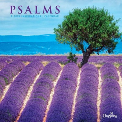 2019 Psalms Field, Wall Calendar  -