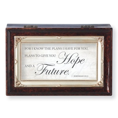 Plans To Give You Hope And A Future Music Box Brown Christianbook Com