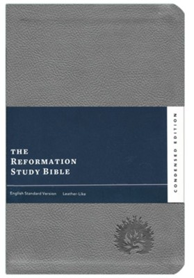 ESV Reformation Study Bible, Condensed Edition, Light Gray Imitation Leather    -     Edited By: R.C. Sproul