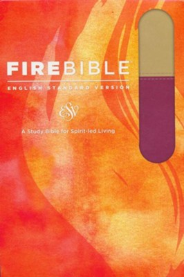 Fire Bible ESV Version, Imitation Leather, Tan/Berry    -
