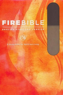 Fire Bible ESV Version, Soft Leather-look, Slate/Charcoal  -