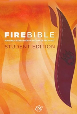 ESV Fire Bible Student Edition Imitation Leather brick  red/plum  -
