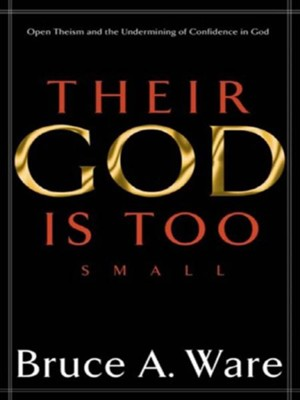 Their God Is Too Small Open Theism And The Undermining Of