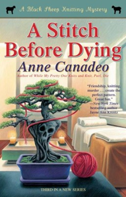 A Stitch Before Dying - eBook  -     By: Anne Canadeo
