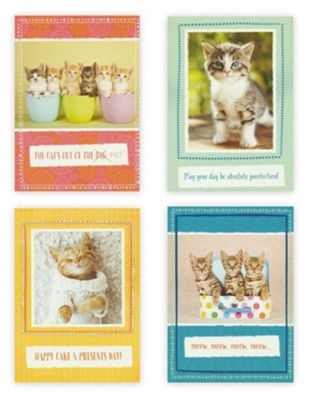 Birthday, Curious Kittens, Boxed cards (KJV)  -