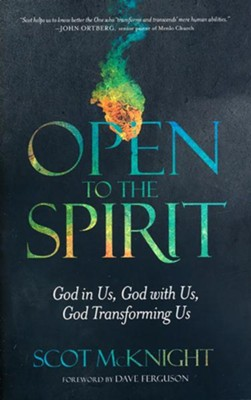 Open to the Spirit: God in Us, God with Us, God Transforming Us - unabridged audiobook on CD  -     Narrated By: Jeremy Richards     By: Scot McKnight