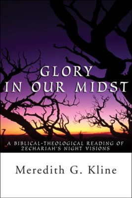Glory in Our Midst: A Biblical-Theological Reading of Zechariah's Night Visions  -     By: Meredith Klein