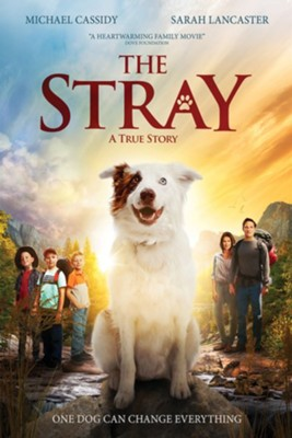 Stray, The  [Streaming Video Purchase] -     By: Mitch Davis