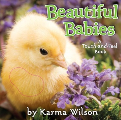 Beautiful Babies: A Touch and Feel Book  -     By: Karma Wilson