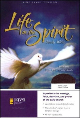 KJV Life in the Spirit Study Bible, Bonded Leather, Burgundy,  Thumb-Indexed (Previously titled The Full Life Study Bible)  -