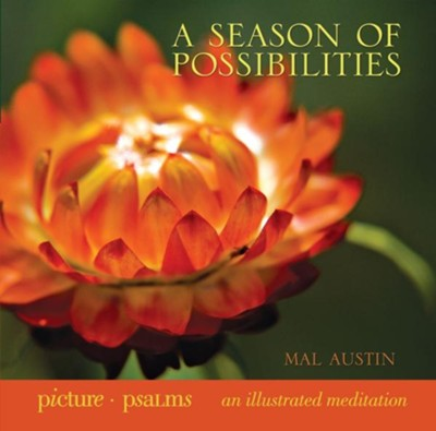 A Season of Possibilities - eBook  -     By: Mal Austin