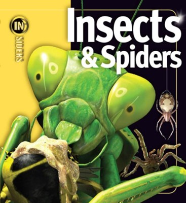 Insects & Spiders  -     By: Noel Tate