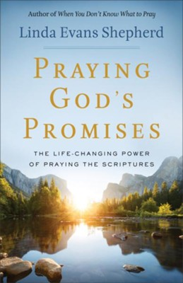 Praying God's Promises: The Life-Changing Power of Praying the Scriptures - eBook  -     By: Linda Evans Shepherd