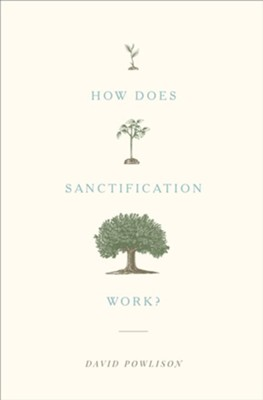 How Does Sanctification Work? - eBook  -     By: David Powlison