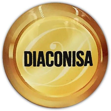 Resultado de imagem para Diaconisa